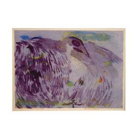 L'oiseau de feu paars