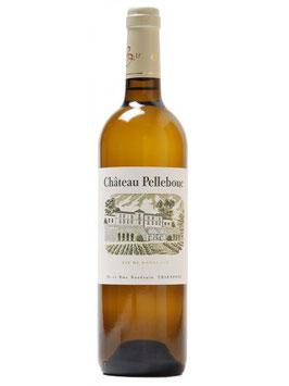 Château Pellebouc Bordeaux Blanc