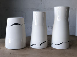 Vases Palmeas