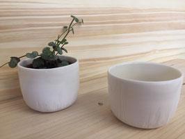 Lot de 2 pots pour plantes