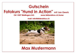 "Gutschein Fotokurs ""Hund in Action"""