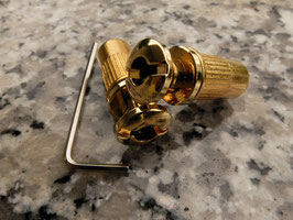 Stud Locks Tailpiece Bridge Stoptail Gold Bridge