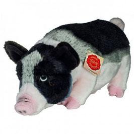 Hermann Teddy Minischwein 33 cm groß