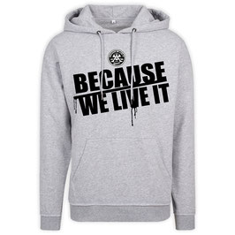 """Orig. BECAUSE WE LIVE IT"" hoody // heather gray"