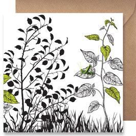 3511 GREETING CARD SHADOWS - GREEN GRASSHOPPER