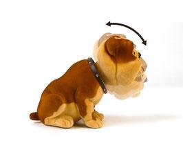 Edo Wackelhund