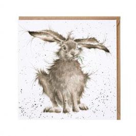 CS052 Hare-Brained