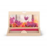 Brieflicht Tulpen