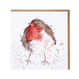 CS078 the jolly robin