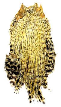 Indischer Hahnenbalg creme
