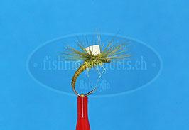 Trockenfliege Klinky biots