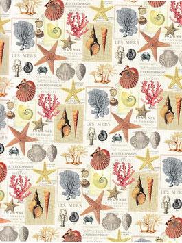 Italienisches Papier / Geschenkpapier Pelarge Muscheln Seesterne
