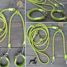 Koppelleine für 2 Hunde im Set mit Halsung