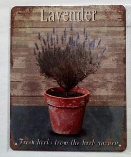 Blechschild Lavendel Topf Fresh herbs from the herb garden 20 x 25 cm