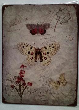 Blechschild Schmetterlinge Beige Bunt 33 x 25 cm