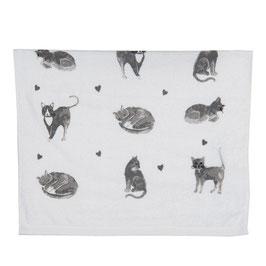 Gästehandtuch Katze Set Weis Grau 100 % Baumw.40 x 60 Clayre & Eef