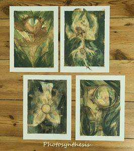 """photosynthesis"" series. prints"