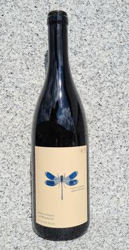 Andreas Tscheppe - Blaue Libelle 2019