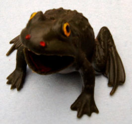 Plastic Broad Muzzle Frog