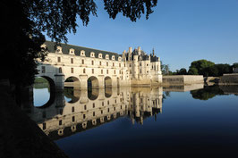 Excursion 3 / Amboise + Chenonceau