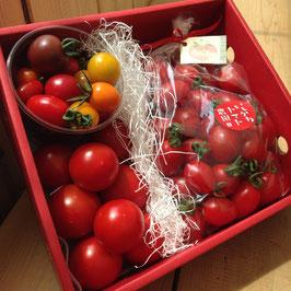シシリアンルージュとフルーツトマトの詰め合わせ