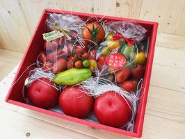トマトの宝石箱