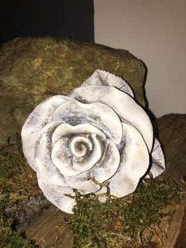 Rose grau meliert