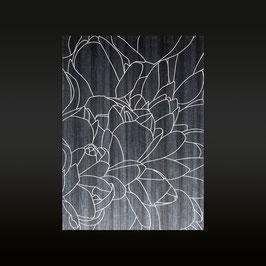 Lilymagnolia Black Wood
