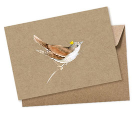 ZAUNKÖNIG 1 Postkarte + Umschlag
