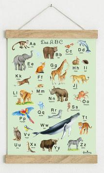 Din A3 GRÜN • ABC Poster Lernposter Tiere Alphabet Kinderzimmer Tierposter Zoo Wald Safari Afrika Tiere Für Kindergarten, zum Schulanfang & 1. Klasse
