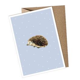 IGEL 1 Postkarte + Umschlag