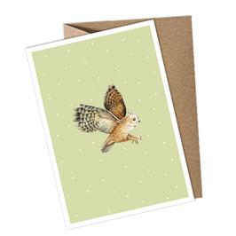 EULE 1 Postkarte + Umschlag