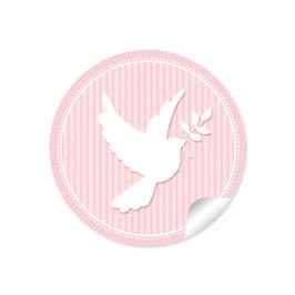 Taube - rosa
