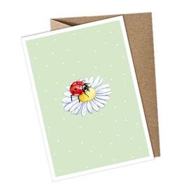 KÄFER 1 Postkarte + Umschlag