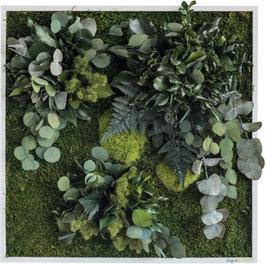 styleGREEN Pflanzenbild (55x55cm)