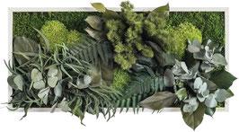 styleGREEN Pflanzenbild (27x57cm)