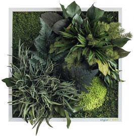 styleGREEN Pflanzenbild (35x35cm)