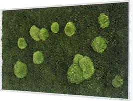 styleGREEN Moosbilder (100x60cm)