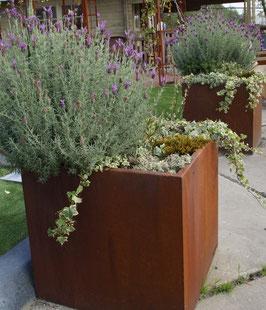 Plantenbak  Cortenstaal H=58cm