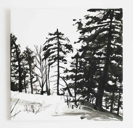Leinwanddruck Bäume