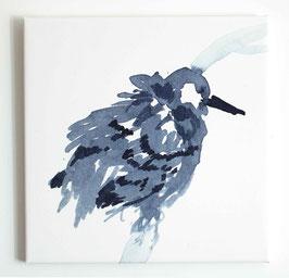 Leinwanddruck Vogel