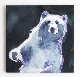 Leinwanddruck Bär