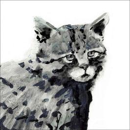 Fineartprint Wildkatze