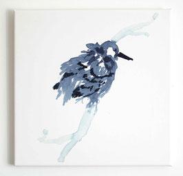 Leinwanddruck Vogel auf Zweig