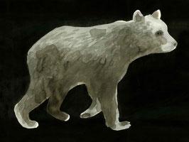 Fineartprint Bär