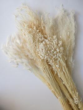 Trockenblumen Box- Blush