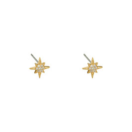 "Ohrstecker Little Star gold ""Clear"""