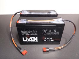 LV12-6 x 2 con conector T-DEAN hembra