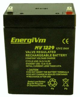 MV1229