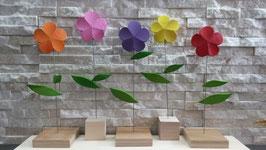 Federdraht-Blume GERBERA